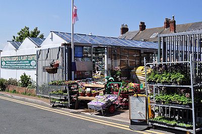 Withernsea Garden Centre